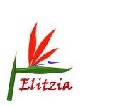 Elitzia